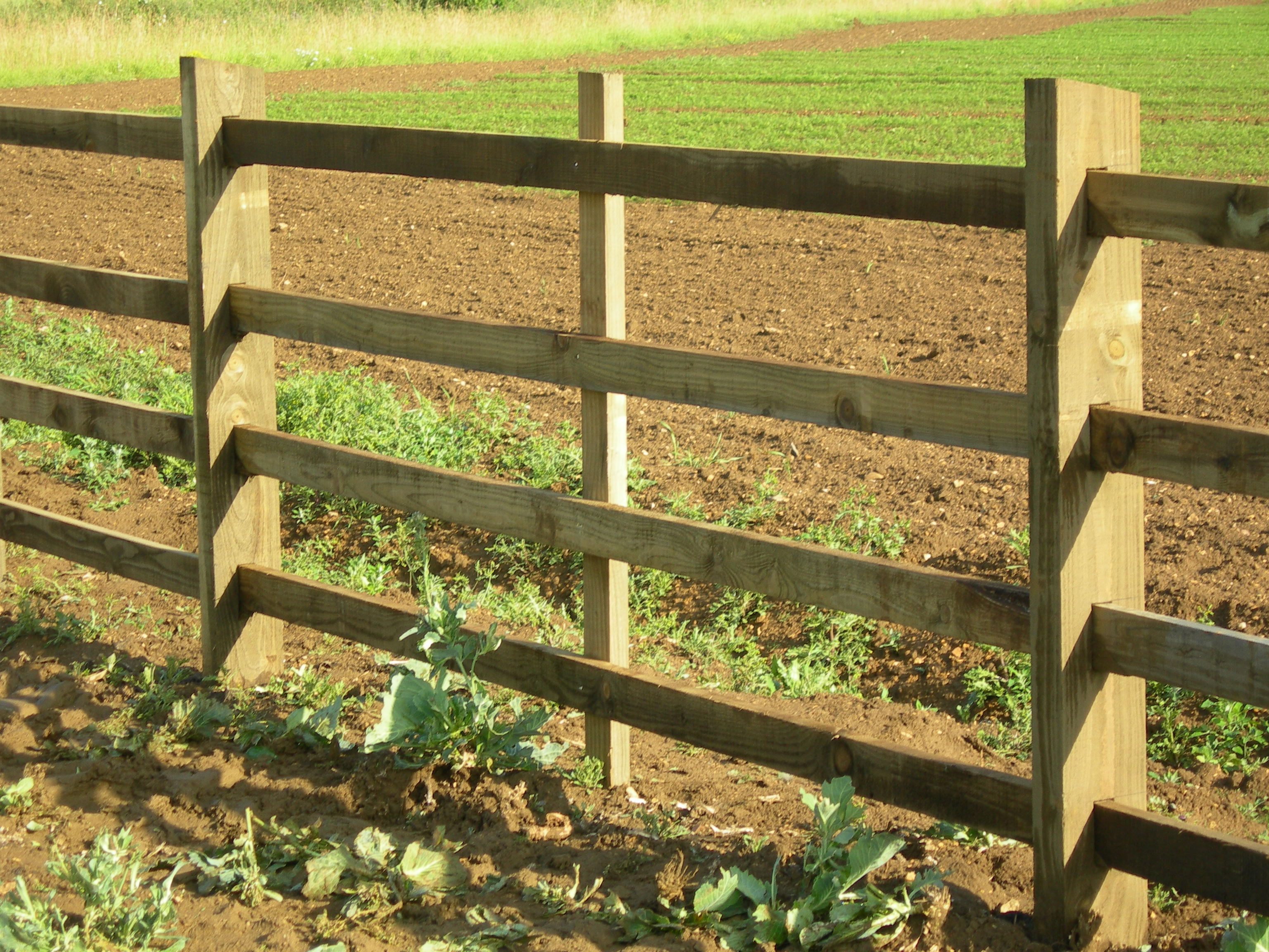 Picture of: Post And Rail Square Sawn And Mortised Hartwells Fencing